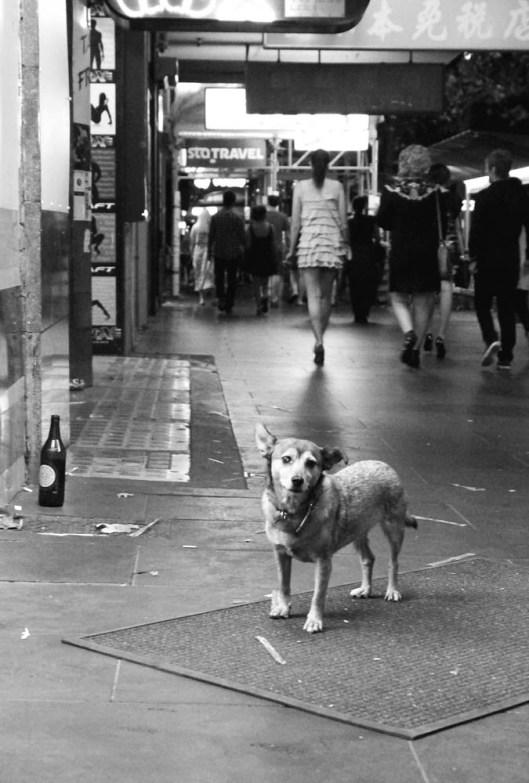 Swanston Street Melbourne...
